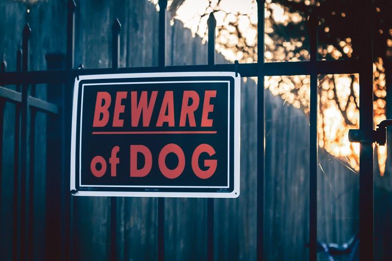 Beware of dog sign in Lakewood