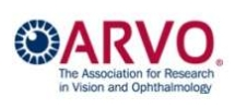 Arvo- The Association for Research in Vision and Ophthalmology.