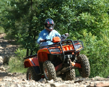 atv rides rocky trail in the woods