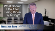 Fort Myers Dog Bite Attorney Gives Advices on What to Do After Being Bitten by a Dog