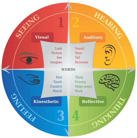 diagram of different learning styles - seeing, hearing, thinking, feeling