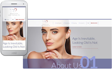 Beverly Hills Laser Institute - new skin care website design